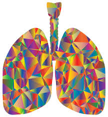 Lungs - Emotional Literacy Resources Teachers Breath Breathing